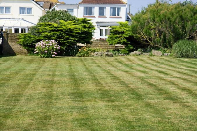 grass-220465_1280